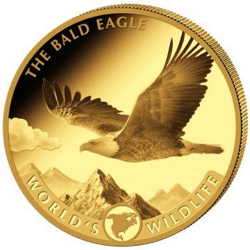 Weißkopfseeadler 5 Unzen Gold