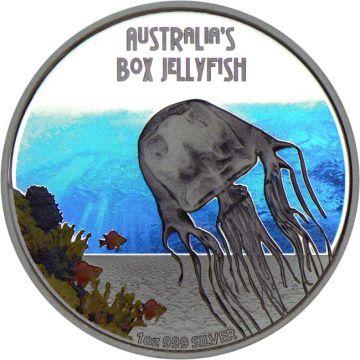 Tödlich! Gefährlich! Australische Würfelqualle!