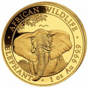 Elefant 1 Unze Gold