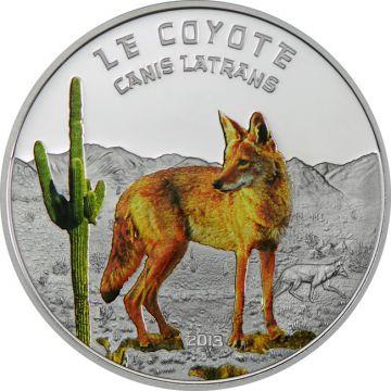 Raubtiere - Kojote