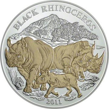 Tiere Afrikas -  Schwarzes Rhinozeros