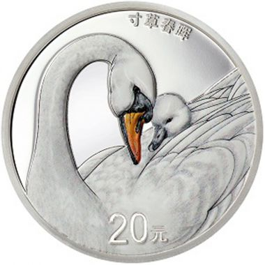 Nachwuchs 60 g Silber